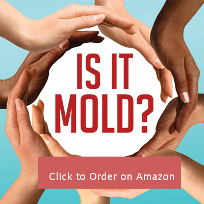 Is It Mold? A Holistic Approach to Managing A Commonly Overlooked Condition
